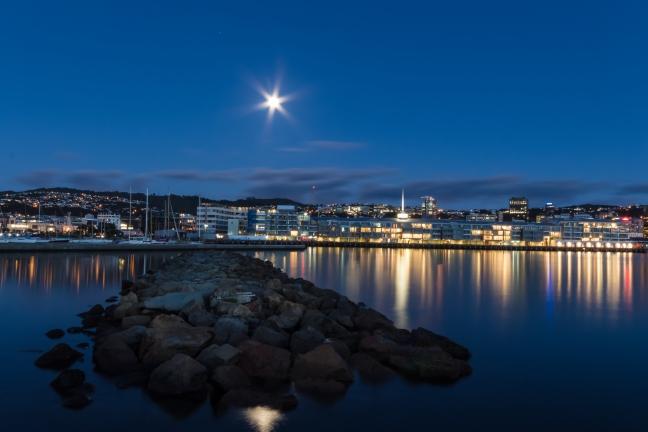 Wellington Harbor Moonlight
